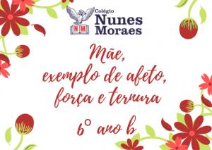 o colégio nunes moraes deseja um (6)